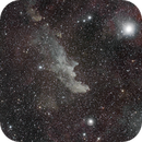 Witch Head Nebula IC 2118 and Rigel,                                Johnson Lo