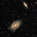 Bode's Galaxy(M81&M82),                                KojiTajima