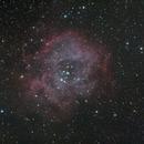 The Rosette nebula in Monoceros,                                Francesco Meschia