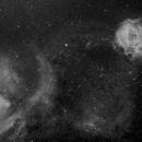Rosette and Cone Nebula,                                Thorsten Glebe