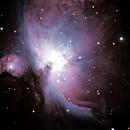 Orion Nebula,                                Stefano Giardinelli