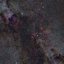 Cygnus Extra Widefield,                                Norman Revere