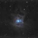 NGC 7023,                                Jarrod McKnelly