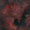 NGC 7000: North America Nebula,                                iuseglasses