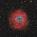 SH2-170 in HOO-RVB, T250 f/4  /  AZEQ6  /  ATIK ONE,                                Pulsar59