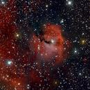 Seagull Nebula,                                Ed Albin