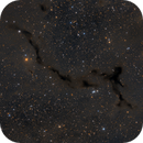 The Seahorse nebula, Barnard 150,                                Francesco Meschia