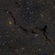 The Seahorse nebula, Barnard 150,                                Francesco Meschia