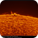Eruptive AR2565 on the Sun limb (H-a) - 24.07.2016,                                Łukasz Sujka