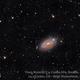 M63 Sunflower Galaxy,                                Ulli_K