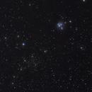 NGC7129 & NGC7142,                                Harold Freckhaus