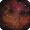 IC 1396 & Elephant's Head Nebula,                                Mark Germani