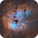 IC410 Tadpoles~ SHO version,                                Dawn Lowry