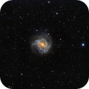 M83,                                Thava Narayanasamy