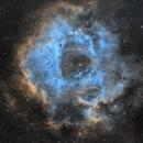 A Hubble Palette Rosette,                                Scott Richards