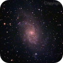 Triangulum Galaxy (M 33) ,                                Joanot