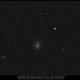 Comet C/2018 Y1 Iwamoto,                                Dominique Callant
