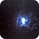 NGC 7023 - Iris Nebula,                                Johan Bakker