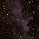 IC2118 Witch Head Nebula in Eridanus ,                                Geoff Scott