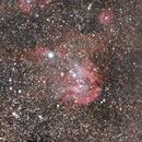 The Running Chicken Nebula,                                Danh