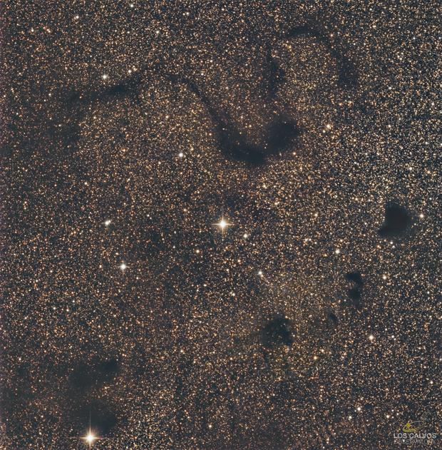 Snake Nebula and Consorts (B72, B68,B69,B70,B71,B74 and B 389),                                Los_Calvos