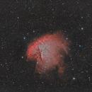 NGC 281 - Pacman Nébula,                                Nicolas Aguilar (Actarus09)