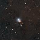 NGC 1333,                                Jarrett Trezzo