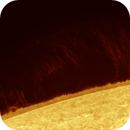 Faint prominence 2020.05.06,                                Alessandro Bianconi