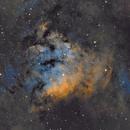 NGC 7822,                                Brian Sweeney