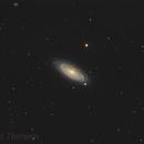 NGC2841 - Flocculent Spiral,                                Jason Guenzel