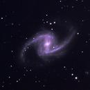 NGC 1365,                                Jonathan Powles