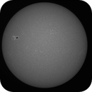 The sun in CaK, WL and HA animation 7/8/2017,                                rigel123