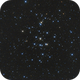 M 44 Behive Cluster,                                Michael Wolter