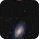 M81 and M82  Mosaic,                                GJL
