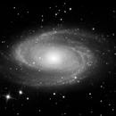 Half an hour of Bode's galaxy (M81 mono),                                Doc_HighCo