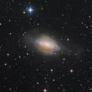 NGC 3521,                                Casey Good