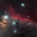 Horsehead Nebula Region - Hyperstar,                                Mike Wiles