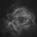 NGC 2237,                                davebowman