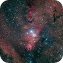 NGC2264 - Cone Nebula in HaLRGB,                                Richard Bratt