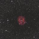 IC  5146,                                H.Chris