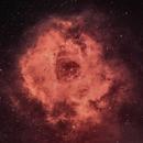 Rosette Nebula in  BiColor,                                Prabhakar