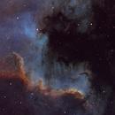 Cygnus Wall,                                John Michael Bellisario