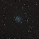 M101,                                Cedric