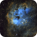The Tadpoles of IC 410,                                Peter