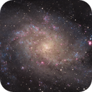 M33 Triangulum Galaxy,                                Charles Pevsner