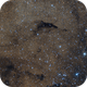 A dolphin jumping in a sea of stars (BARNARD 252),                                Maicon Germiniani