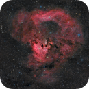Martyrs' Blood ( NGC 7822 in HaRGB ),                                Reza Hakimi