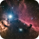 Flame and Horsehead Nebula,                                Wirrkopf