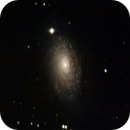 M63 - Sunflower galaxy,                                André Wiget