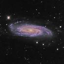 NGC 3198,                                Frank Colosimo